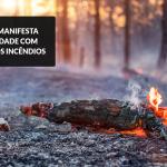 solidariedade-incendios